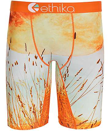 Ethika Moon View Orange Boxer Briefs